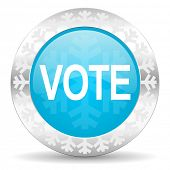 vote icon, christmas button