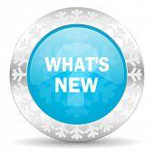 new icon, christmas button