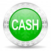 cash green icon, christmas button