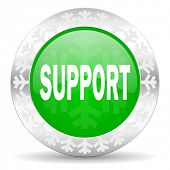 support green icon, christmas button