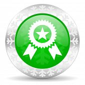 award green icon, christmas button, prize sign