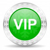 vip green icon, christmas button