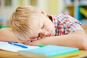 Tired elementary pupil napping by desk after lessons