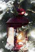 Christmas lantern hanging on pine