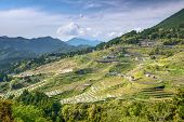 Rice terraces at Maruyama Senmaida in Kumano, Mie Prefecture, Japan.