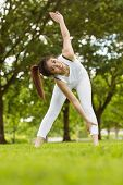 Full length portrait of toned young woman doing stretching exercises in park