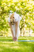 Peaceful blonde doing yoga in the park on a sunny day