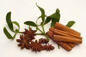 Spice and mistletoe twig