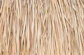 Straw Pattern Background