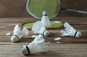 Set Of Badminton. Paddle And The Shuttlecock