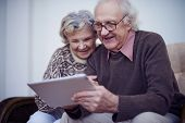 Affectionate seniors spending leisure in internet using touchpad