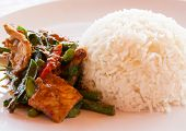 image of thai food  - Thai food Thai spicy food Fried pork - JPG