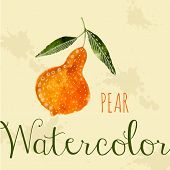 Watercolor pear hand drawn style card white ink