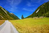 Wide dirt road in an Alpine valley. Sunny autumn day. The mountain slopes are covered with dense pine forest