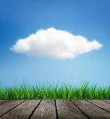 Wooden Floor, Grass And Cloud