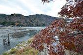 View From Togetsukyo Bridge In Arashiyama, Kyoto
