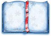 Open snow book