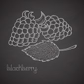 Chalkboard Label With Blackberries And Leaf