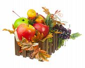 Composition From Artificial Fruits And Autumn Leaves In Wooden Box.