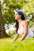 Peaceful brunette doing yoga on grass in the park