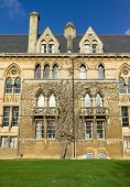 picture of english ivy  - Perfect picture of an Oxford city landmark - JPG