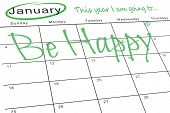 this year i am going to against january calendar