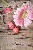 Easter Eggs With Gerbera Daisy Flowers