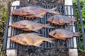 Smoked Fresh Fish Just Caught In Freshwater River