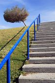 Stairway to the Sky.