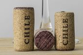 Wine bottle corks of Chile 04
