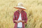 picture of oats  - Portrait of teenage farmer boy is checking golden yellow oat seeds in cupped palms at ripe field  - JPG