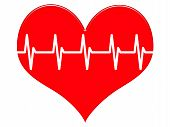 Heart Showing Beating Pulse