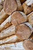 foto of chalet  - Close up of logs of a wooden chalet - JPG