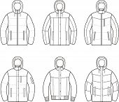 picture of down jacket  - Vector illustration of women - JPG