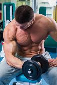 picture of strength  - Strength training with dumbbells - JPG