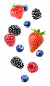 Isolated Mixed Berries poster