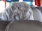 Traveler Pensioner White Hair Closeup