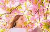 Cute Child Enjoy Aroma Of Sakura On Spring Day. Girl With Long Hair Outdoor, Cherry Blossom On Backg poster