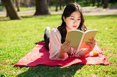 Focused Asian Woman Lying And Reading Book On Lawn. Pretty Young Lady Lying On Blanket On Grass With poster