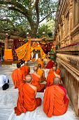 Monks Praying Under The Bodhy-Tree, Bodhgaya, India.