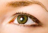 Eye With Lenses