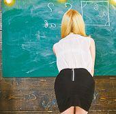 Lady Sexy Teacher In Short Skirt With Zip On Back Explaining Formula. Sexy Teacher Concept. Teacher  poster