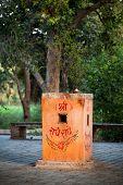stock photo of mahabharata  - Plant of Tulsi  - JPG