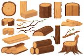 Wood Industry Raw Materials. Realistic Production Samples Collection. Tree Trunk, Logs, Trunks, Wood poster