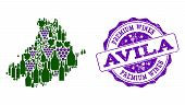 Vector Collage Of Grape Wine Map Of Avila Province And Purple Grunge Stamp For Premium Wines Awards. poster