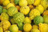Ripe Kaffir limes fruit or Bergamot fruit