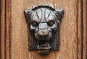 Wooden Lion Head Relief - Decorative Element On Ancient Weathered Door  In Old Part Of Tallinn, Esto