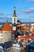 foto of olaf  - Old town of Tallinn - JPG