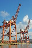 Cranes in red at an industrial port