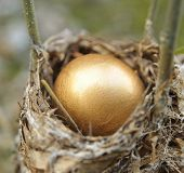 Close Up Of A Golden Nest Egg